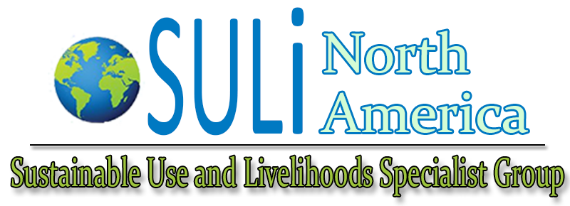 SULi North America